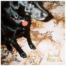Moon Life mp3 Album by Neive Strang
