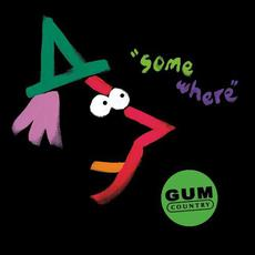 Somewhere mp3 Album by Gum Country