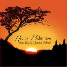 Nectar Meditation mp3 Album by Steve Roach & Serena Gabriel