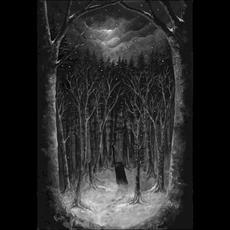 Im Wald mp3 Album by Paysage d'Hiver