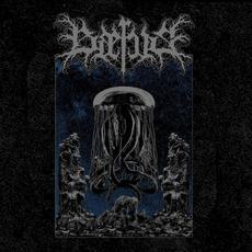 Baerus mp3 Album by Baerus