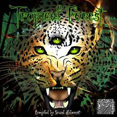 Tropical Forest mp3 Compilation by Various Artists