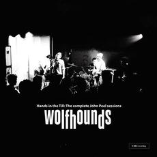 Hands in the Till: The Complete John Peel Sessions mp3 Artist Compilation by The Wolfhounds