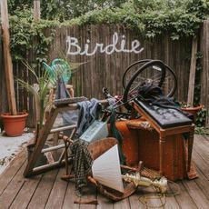 Birdie mp3 Album by Slaughter Beach, Dog
