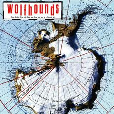 Blown Away mp3 Album by The Wolfhounds