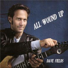 All Wound Up mp3 Album by Dave Fields