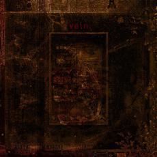Self-Destruct mp3 Album by Vein