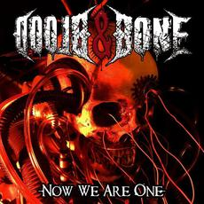 Now We Are One mp3 Album by Blood & Bone
