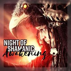 Night of Shamanic Awakening mp3 Compilation by Various Artists