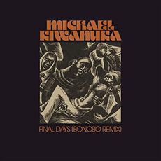 Final Days (Bonobo Remix) mp3 Remix by Michael Kiwanuka