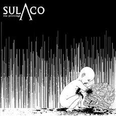 Privilege mp3 Album by Sulaco