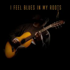 I Feel Blues in My Roots mp3 Compilation by Various Artists