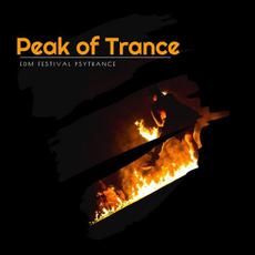 Peak of Trance: EDM Festival Psytrance mp3 Compilation by Various Artists