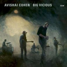 Big Vicious mp3 Album by Avishai Cohen & Big Vicious