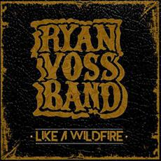 Like A Wildfire mp3 Album by Ryan Voss Band