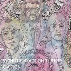 Turtle Reaction mp3 Album by Psychotic Reaction