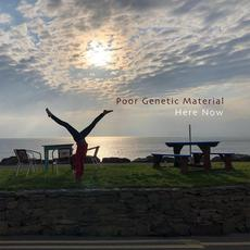 Here Now mp3 Album by Poor Genetic Material