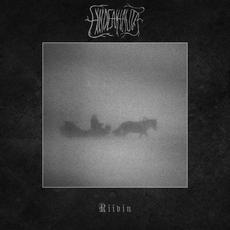 Riivin mp3 Album by Hiidenhauta
