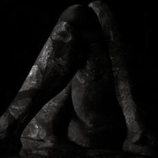 Thrum mp3 Album by Fawn Limbs