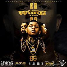 Lite Work, Vol. II mp3 Artist Compilation by Yella Beezy