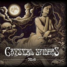 Molt mp3 Album by Crystal Spiders