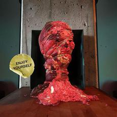 Enjoy Yourself mp3 Album by Melted Bodies