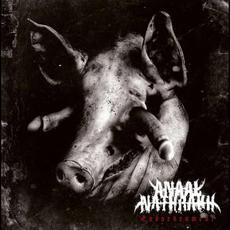 Endarkenment mp3 Album by Anaal Nathrakh