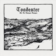 Bit To Ewigen Daogen mp3 Album by Toadeater