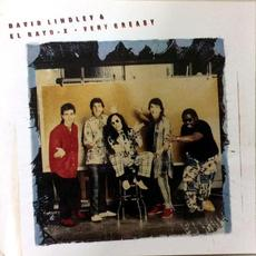 Very Greasy mp3 Album by David Lindley