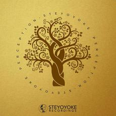 Steyoyoke Perception, Vol.4 mp3 Compilation by Various Artists