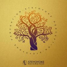 Steyoyoke Perception, Vol.6 mp3 Compilation by Various Artists