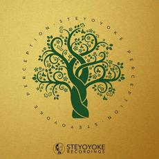 Steyoyoke Perception, Vol.5 mp3 Compilation by Various Artists