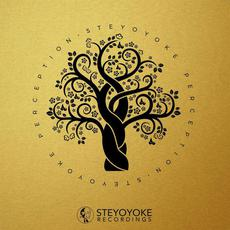 Steyoyoke Perception, Vol.1 mp3 Compilation by Various Artists
