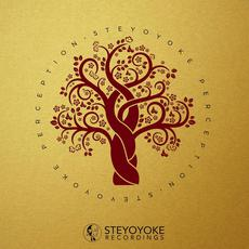 Steyoyoke Perception, Vol.3 mp3 Compilation by Various Artists