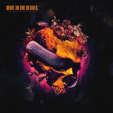 The Hell You Wanted mp3 Album by Devil In The Details