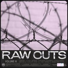 Raw Cuts, Volume III mp3 Compilation by Various Artists