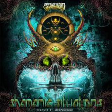 Shamanic Situations mp3 Compilation by Various Artists