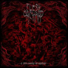 A Vile Display of Carnage mp3 Album by Flesh Orchard