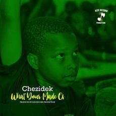 What Your Made Of mp3 Single by Chezidek