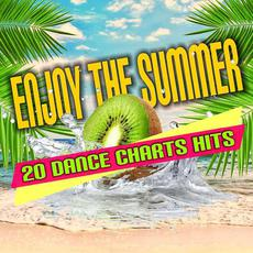 Enjoy The Summer: 20 Dance Chart Hits mp3 Compilation by Various Artists