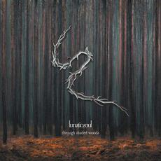Through Shaded Woods (Deluxe Edition) mp3 Album by Lunatic Soul