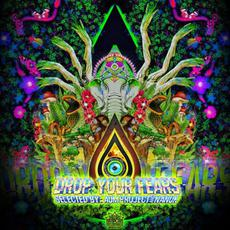 Drop Your Fears mp3 Compilation by Various Artists