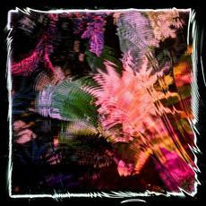 Kids Talk Sun mp3 Album by Camila Fuchs