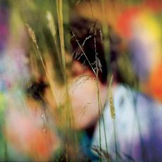 Sam Amidon mp3 Album by Sam Amidon