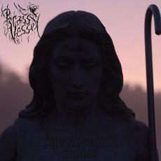 Dirt Kingdom Demos mp3 Album by Brass Vessel