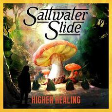 Higher Healing mp3 Single by Saltwater Slide