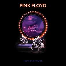 Delicate Sound of Thunder (Re-Issue) mp3 Live by Pink Floyd