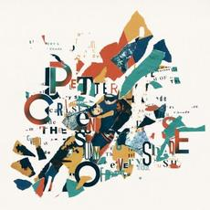 The Sum Of Every Shade mp3 Album by Petter Carlsen