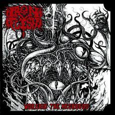 Worship the Necrogod mp3 Album by Iron Flesh
