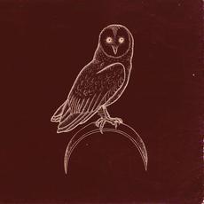 In Rooms mp3 Album by Dawnwalker